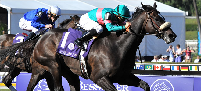 Zenyatta winning the 2008 Ladies Classic
