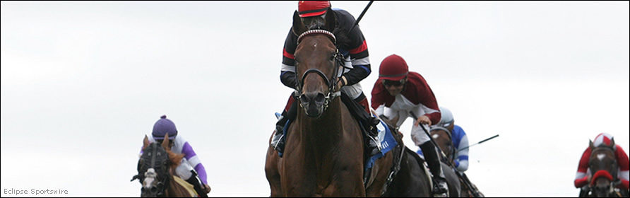 Horses in the Eddie Read Stakes at Del Mar